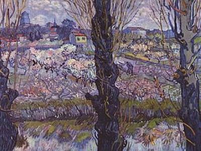 Vincent Willem van Gogh - Blick auf Arles - 100 Teile (Puzzle)
