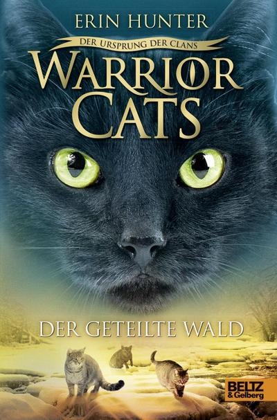 Warrior Cats - Geteilte Wald