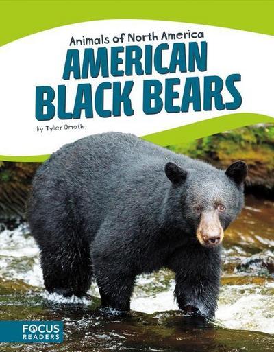 American Black Bears