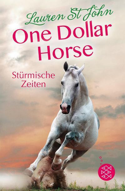 one-dollar-horse-sturmische-zeiten