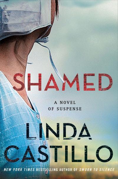 Shamed: A Kate Burkholder Novel