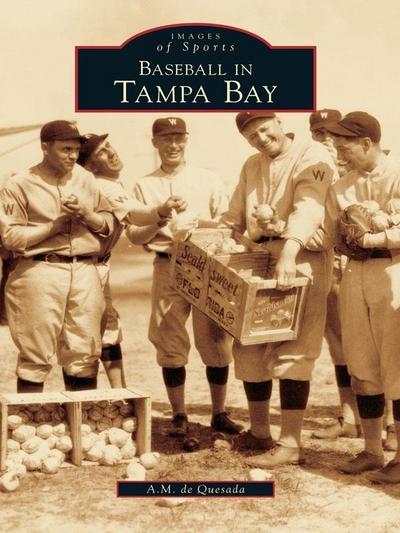 Baseball in Tampa Bay