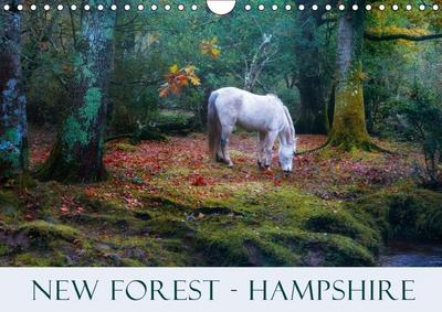 New Forest Hampshire (Wall Calendar 2019 DIN A4 Landscape)