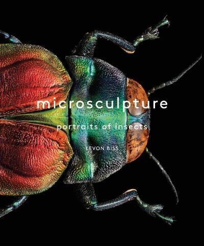 Microsculpture