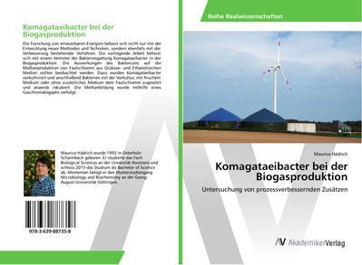 Komagataeibacter bei der Biogasproduktion