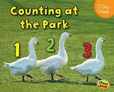 Counting at the Park