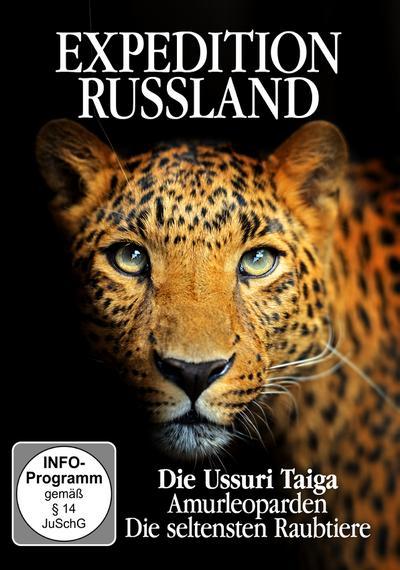 Amurleoparden Die Seltensten Raubtiere