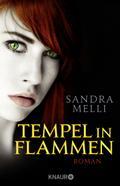 Dämmerlande 05. Tempel in Flammen