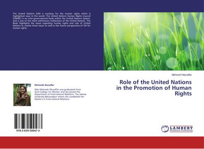 Role of the United Nations in the Promotion of Human Rights