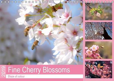 Fine Cherry Blossoms (Wall Calendar 2019 DIN A4 Landscape)