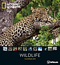 National Geographic Wildlife 2019