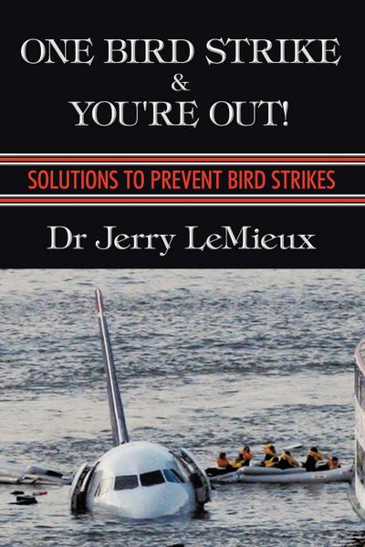 One Bird Strike and You're Out!: Solutions to Prevent Bird Strikes