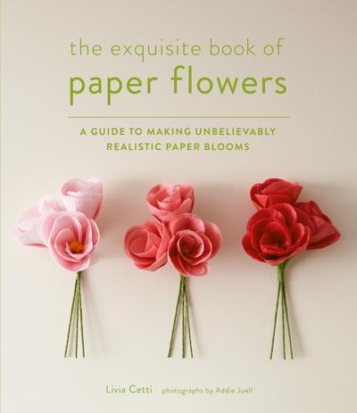 The Paper Flower Book