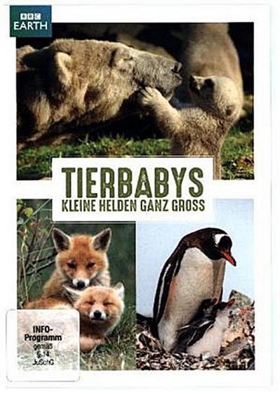 Tierbabys - Kleine Helden ganz groß, 1 DVD