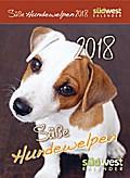 Süße Hundewelpen 2018 Abreißkalender