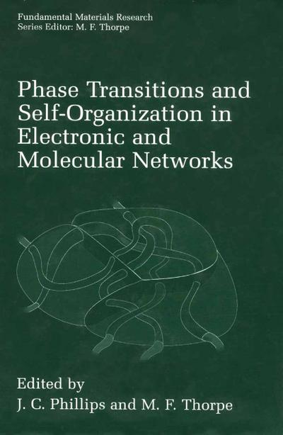 Phase Transitions and Self-Organization in Electronic and Molecular Networks