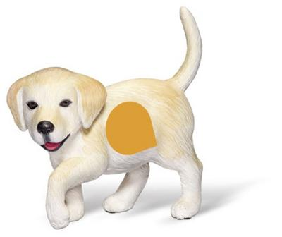 tiptoi® Golden-Retriever-Welpe