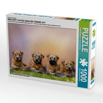 Ein Motiv aus dem Kalender IRISH SOFT COATED WHEATEN TERRIER 2017 (Puzzle)