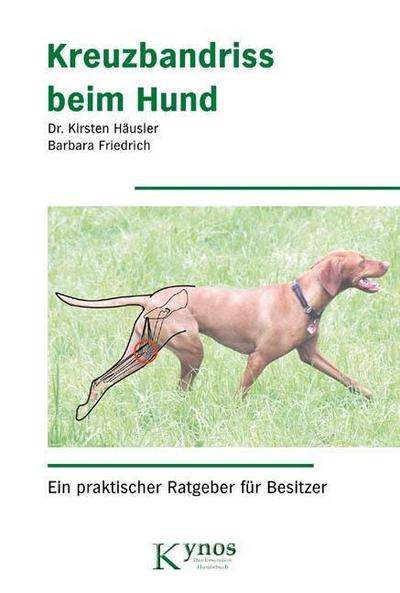 Kreuzbandriss beim Hund: Ein praktischer Ratgeber für Besitzer