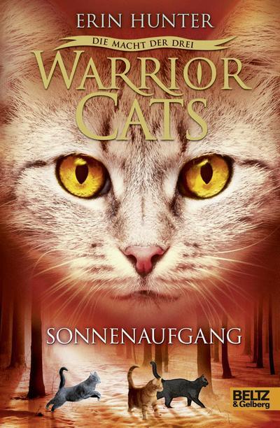 Warrior Cats - Die Macht der dre