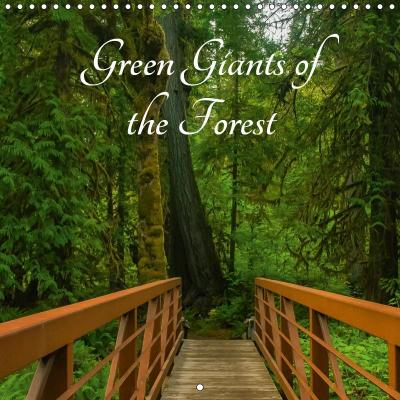 Green Giants of the Forest (Wall Calendar 2019 300 × 300 mm Square)