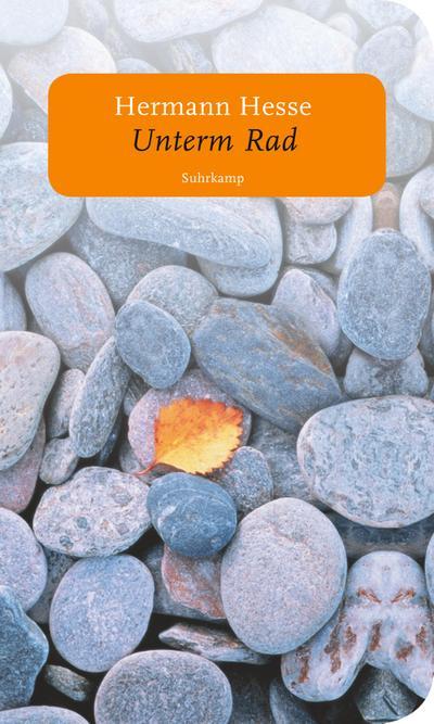 Unterm Rad: Roman (suhrkamp taschenbuch)