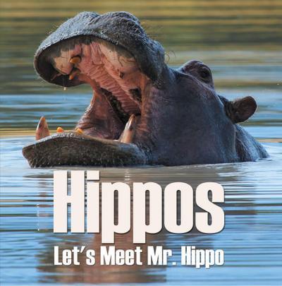 Hippos - Let's Meet Mr. Hippo