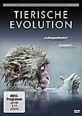 David Attenborough: Tierische Evolution