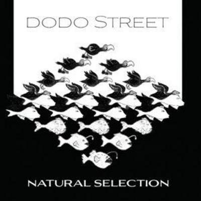 Dodo Street: Natural Selection