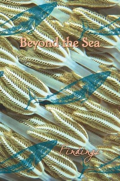 Beyond the Sea: Findings