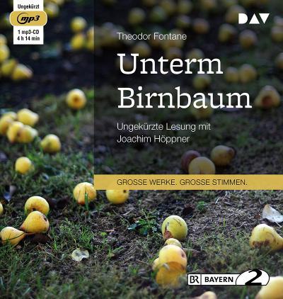 Unterm Birnbaum: Ungekürzte Lesung (1 mp3-CD)