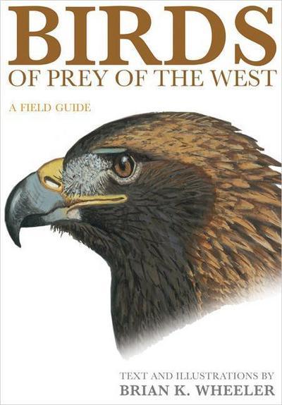 Hawks of the Western USA & Canada